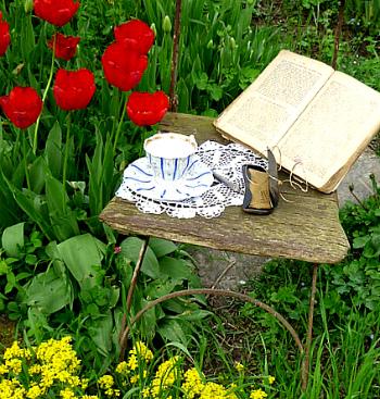 книга чашка цветы