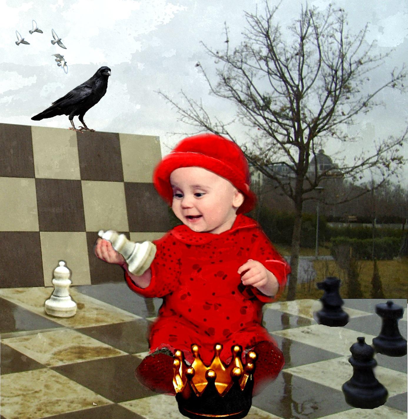 шахматы как выбор